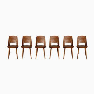 Mondor Chairs von Baumann, 1960er, 6er Set