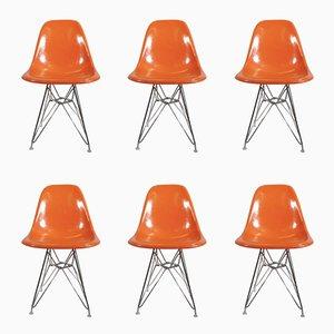 Sillas DSR vintage de Charles & Ray Eames para Herman Miller. Juego de 6
