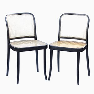 Model 811 Chairs by Josef Hoffmann for TON, 1970s, Set of 2
