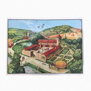 Poster raffigurante una fattoria di MDI, anni '60