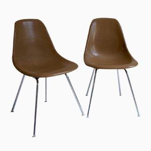 Mid-Century DSX Fiberglas Stühle von Charles & Ray Eames für Vitra, 2er Set
