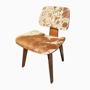 Modell DCW Beistellstuhl von Charles & Ray Eames für Herman Miller, 1946