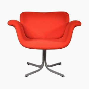 Dutch Tulip Chair by Pierre Paulin for Artifort, 1950s