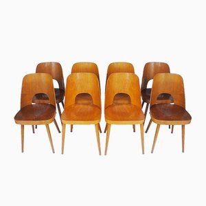Dining Chairs by Oswald Haerdtl for Thonet, 1950s, Set of 8