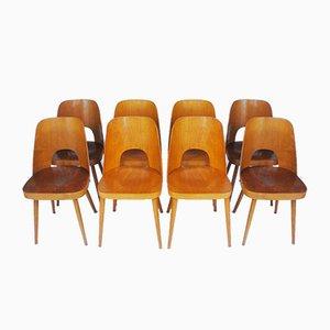 Esszimmerstühle von Oswald Haerdtl für Thonet, 1950er, 8er Set