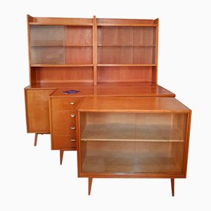 Vintage 602 Series Cabinets by Franz Ehrlich for VEB, Set of 3