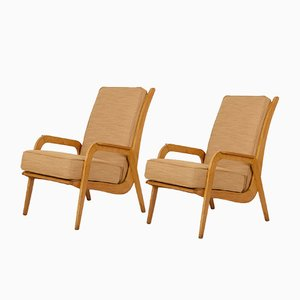 Easy Chairs by Cees Braakman for Pastoe, 1950s, Set of 2