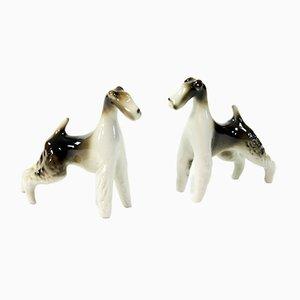 Esculturas de foxterrier de Royal Dux, años 60. Juego de 2