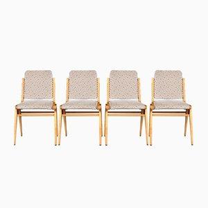 Mid-Century Buchenholz Esszimmerstühle von Franz Schuster für Wiesner-Hager, 4er Set