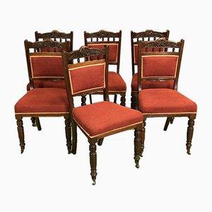 Englische Stühle aus 19.Jh., 6er Set