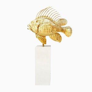 Lámpara en forma de pez escorpión de latón dorado, años 50