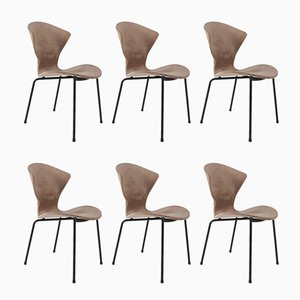 Chairs by Geneviève Dangles for Burov, 1957, Set of 6