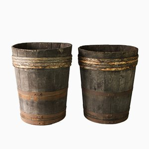Vintage French Grape Harvesting Barrels, Set of 2
