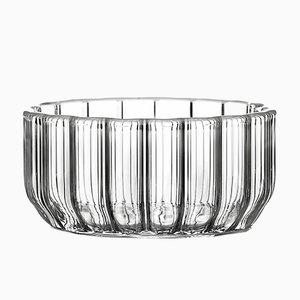 Mittlere Dearborn Glasschale von Felicia Ferrone für fferrone