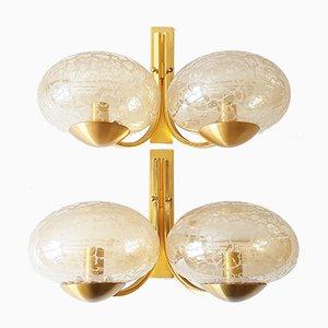 Lámparas de pared francesas Mid-Century de latón dorado y vidrio. Juego de 2