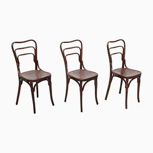 Chaises d'Appoint Antiques en Bois Courbé de J. & J. Kohn, 1900s, Set de 3