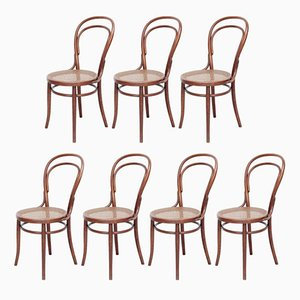 Antique Bentwood Chairs from Türpe, 1900s, Set of 7