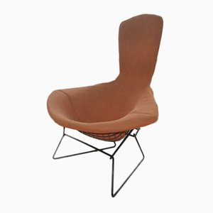Vintage Bird Chair by Harry Bertoia for Knoll