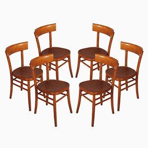 Mid-Century Modern Stühle von ISA. Bergamo, 6er Set