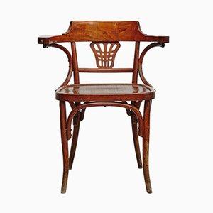 Bentwood Armchair, 1900s