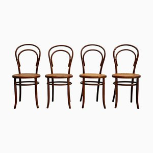 Antique Austrian Side Chairs from Fischel, Set of 4