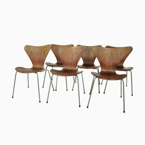 Model 3107 Rosewood Chairs by Arne Jacobsen for Fritz Hansen, 1950s, Set of 6