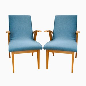Model 300-123 Var Armchairs by Marian Puchała for Bystrzyckie Furniture Factory, 1960s, Set of 2