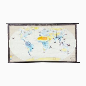 Vintage German Precipitation Map of the Earth from Dr. Haack, 1970s