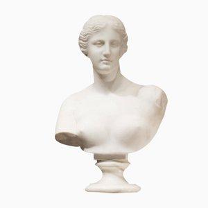 Buste en Marbre par Guglielmo Pugi, Italie, 1880s