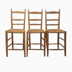 Toskanische Vintage Stühle aus Eichenholz, 3er Set