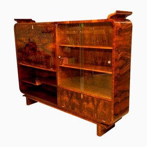 Art Deco Bohemian Walnut Library Cabinet, 1930s