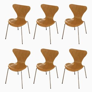 Vintage Series 7/3107 Beech Chairs by Arne Jacobsen for Fritz Hansen, Set of 6