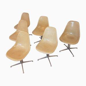 Sillas La Fonda DSW de fibra de vidrio de Charles & Ray Eames para Herman Miller, años 70. Juego de 6