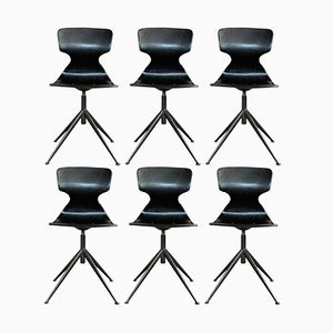 Chairs on Metal Base from Pagholz Flötotto, 1960s, Set of 6