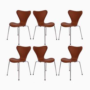 Modell 3107 Stühle aus kastanienbraunem Leder von Arne Jacobsen für Fritz Hansen, 1967, 6er Set