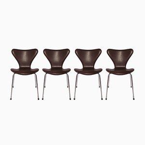 Model 3107 Dark Brown Leather Chairs by Arne Jacobsen for Fritz Hansen, 1967, Set of 4
