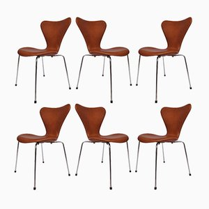 Model 3107 Leather Chairs by Arne Jacobsen for Fritz Hansen, 1967, Set of 6