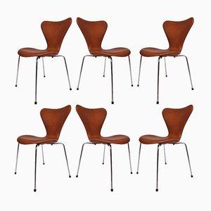 Modell 3107 Leder Stühle von Arne Jacobsen für Fritz Hansen, 1967, 6er Set