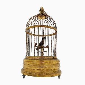 Musikalischer Automat mit zwitscherndem Vogel & Käfig von Karl Griesbaum, 1910er