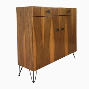 Rosewood Shoe Cabinet, 1960s