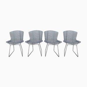 Stühle von Harry Bertoia für Knoll, 1980er, 4er Set