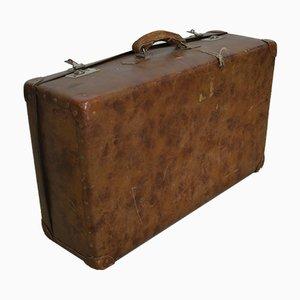 Vintage Vulcan Cardboard Trunk