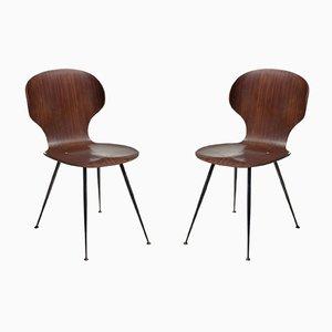 Mid-Century Esszimmerstühle aus Schichtholz & Metall von Carlo Ratti für Lissoni, 1950er, 2er Set