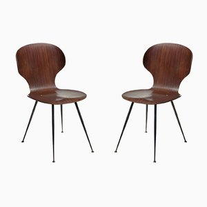 Mid-Century Plywood & Metal Dining Chairs by Carlo Ratti for Lissoni, 1950s, Set of 2