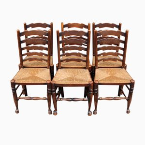 Oak Ladder Back Chairs with Rush Seats, 1935, Set of 6