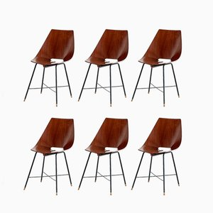 Italian 127-B Plywood Dining Chairs from Societá Compensati Curvati, 1959, Set of 6