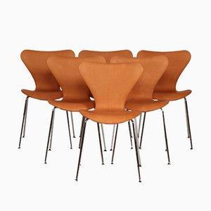 Chaises Modèle 7 par Arne Jacobsen pour Fritz Hansen, 1980s, Set de 6