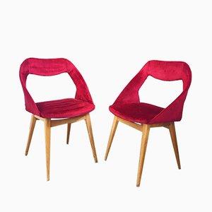 Chaises par Louis Paolozzi pour Zol, 1960s, Set de 2
