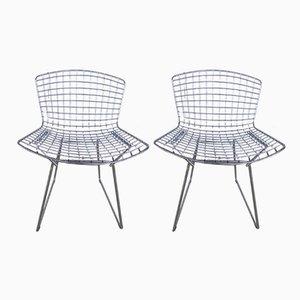 Stühle von Harry Bertoia für Knoll, 1985, 2er Set