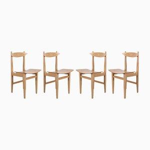 Polish Chairs by Maria Chomentowska for Zakłady im. Wielkiego Proletariatu à Elblagu, 1950s, Set of 4